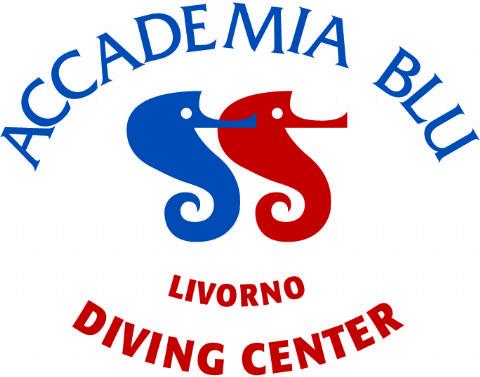 Offro lavoro accademia blu seleziona staff stagione 2 - Dive center blu ...